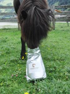 Dosieranleitung Pferdehanf - Pferd frisst Pferdehanf aus dem Sack